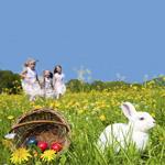 Easter Travel Insurance