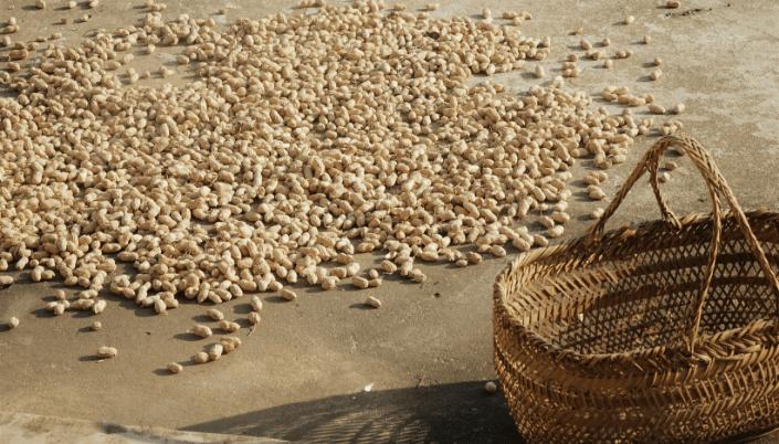 foam peanuts