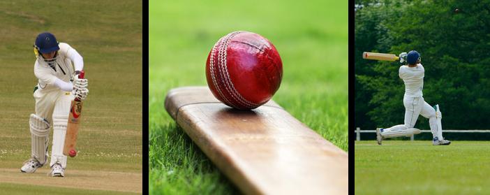 cricket travel insurance