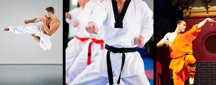 martial arts travel insurance
