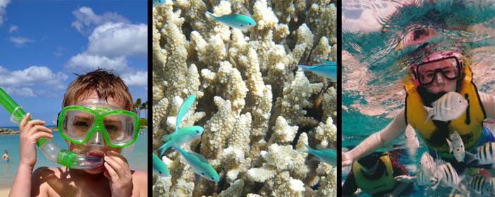 snorkeling travel insurance