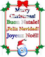 Winter holidays greeting