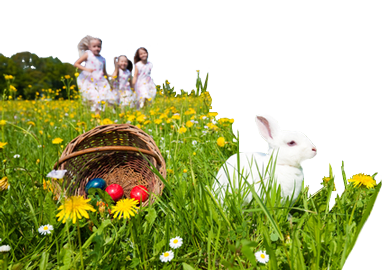 easter travel insurance