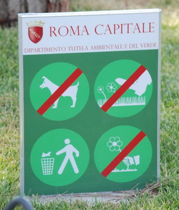 Rome Rules