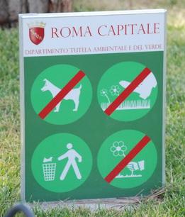 Rome Rules