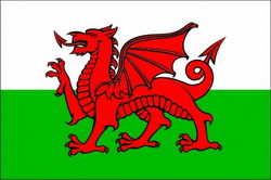 travel insurance for Welsh